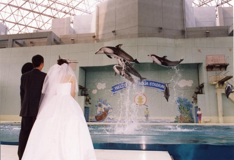 テーマパークで結婚式