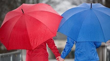 雨の日の散歩をしてみる